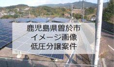 kagoshimasoo
